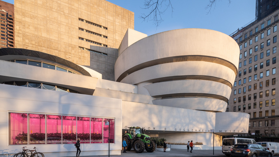 Ντοματόκηπος μεγαλώνει μέσα στο μουσείο Guggenheim
